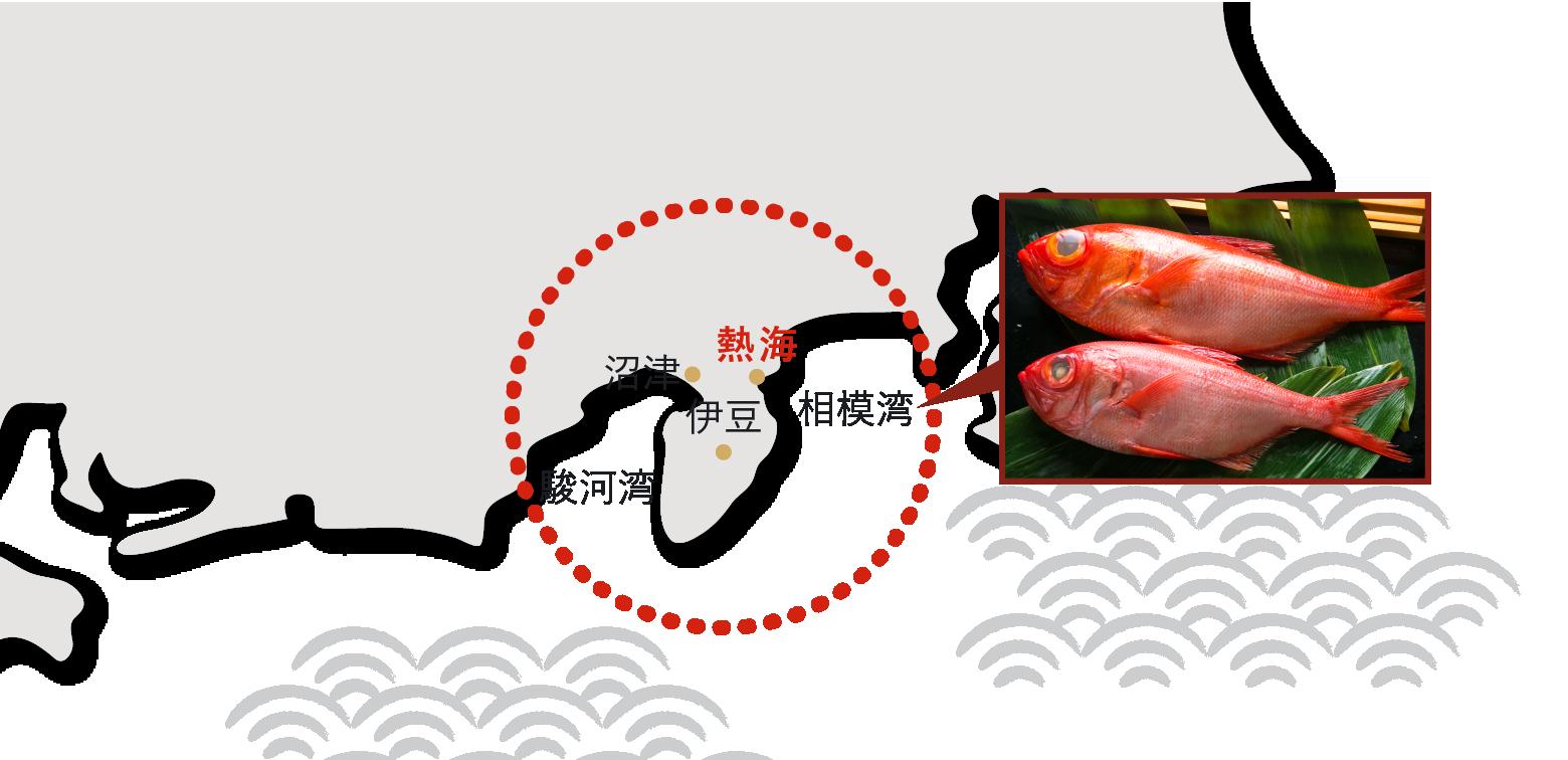 伊豆の名地魚、「金目鯛」。