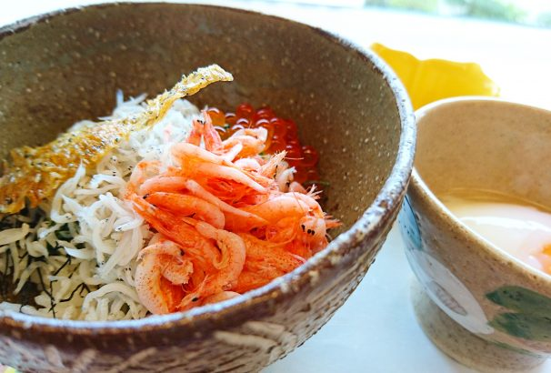 熱海なら、しらす丼。桜海老もはずせない!古屋旅館「釜上げしらすとさくら海老の二色丼」新発売予定!