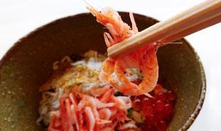 駿河湾の恵み~ 釜上げしらす&桜海老のミニ2色丼